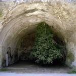 L'albero capovolto - fotografia di Salvatore Esposito